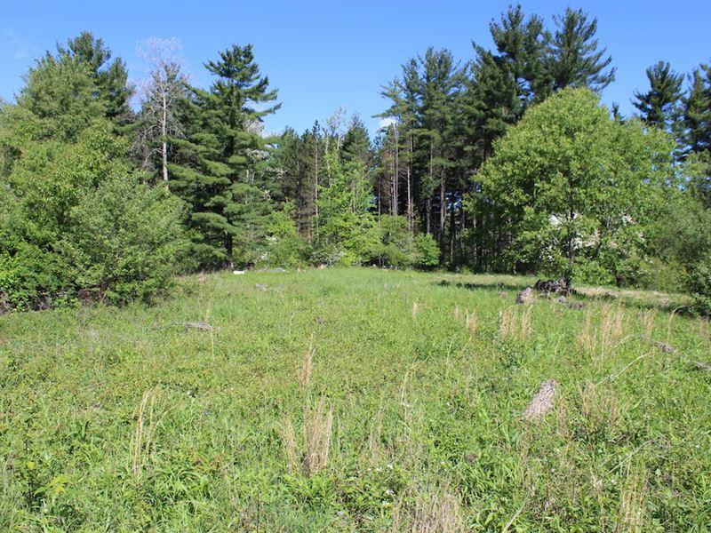 Muntz Rd - 10 Acres : Cadiz : Harrison County : Ohio