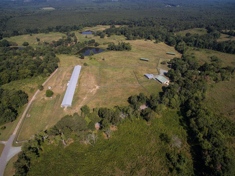 Chatham Co Horse Farm : Siler City : Chatham County : North Carolina