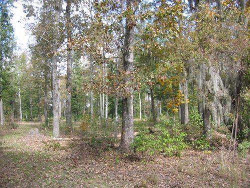 Dochas at Black River : Manning : Clarendon County : South Carolina