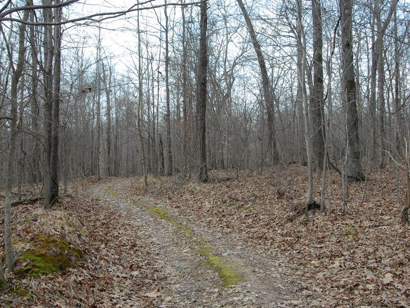 Hunting Club On Crowley's Ridge : West Helena : Phillips County : Arkansas