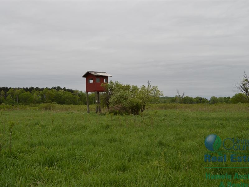 97 +/- Acres Columbia Cy Multi Par : Dalton : Columbia County : Wisconsin
