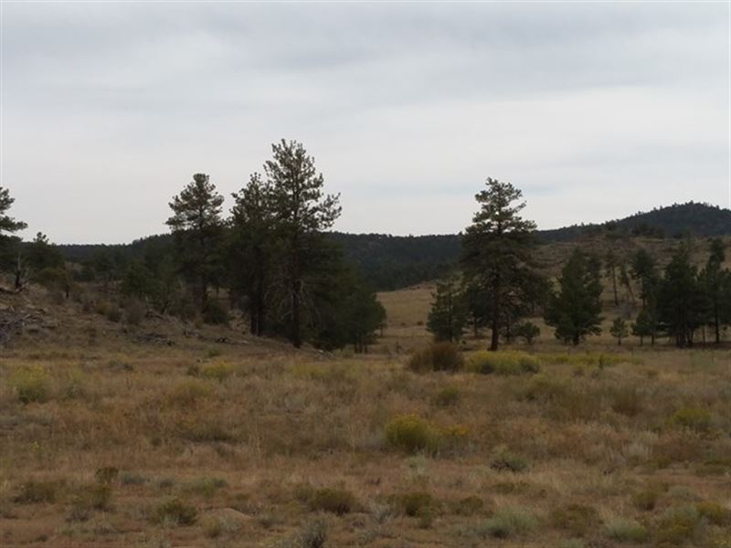 Mountain Views : Cotopaxi : Fremont County : Colorado