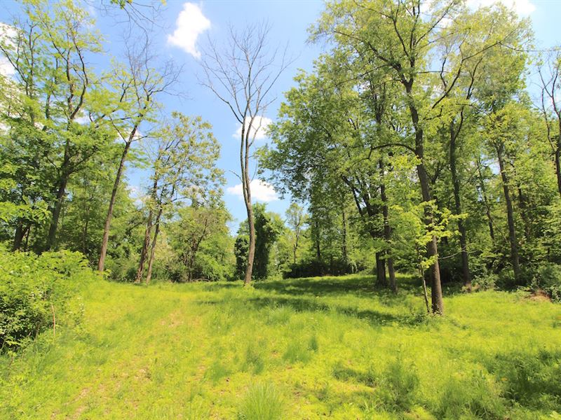 Shannon Rd - 75 Acres : Frazyesburg : Muskingum County : Ohio
