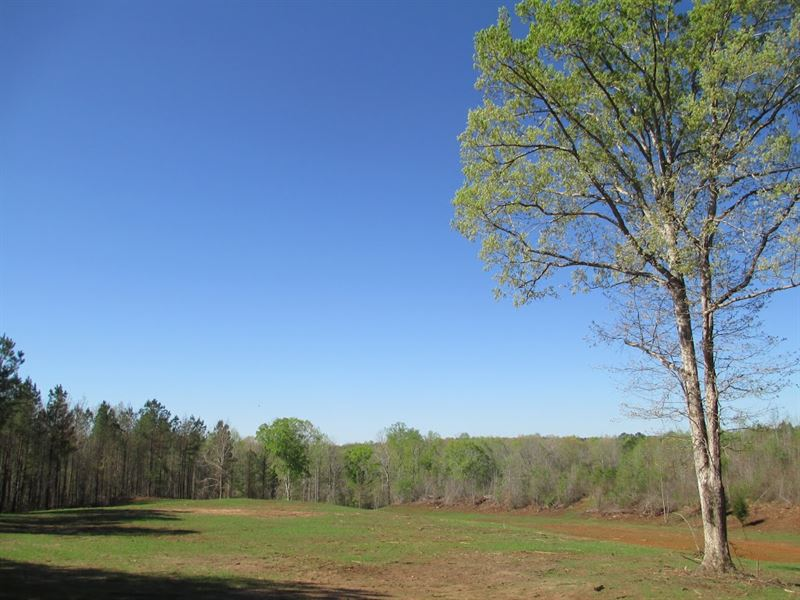 Nice Country Setting On 60+/- Acres : La Fayette : Chambers County : Alabama