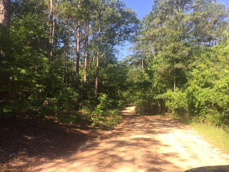 35 Acres Of Residential Or Developm : Hattiesburg : Lamar County : Mississippi