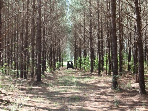 115 Acres In Jefferson Davis County : Prentiss : Jefferson Davis County : Mississippi