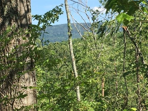 21+/-Acres With Scenic Views : Whitwell : Sequatchie County : Tennessee