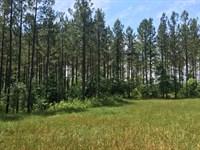 Rural Riverfront Property : Madison : Morgan County : Georgia