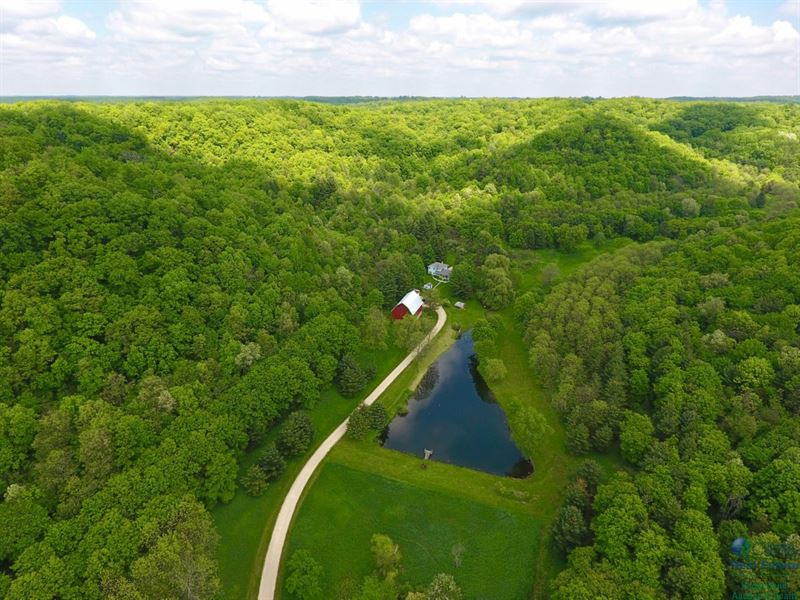 Secluded Farmhouse W/ Hunting Land : Richland Center : Richland County : Wisconsin
