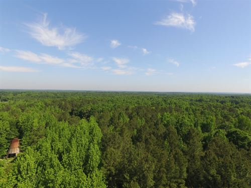 Timber/Farm/Hunting Land & Homesite : Amelia Court House : Amelia County : Virginia