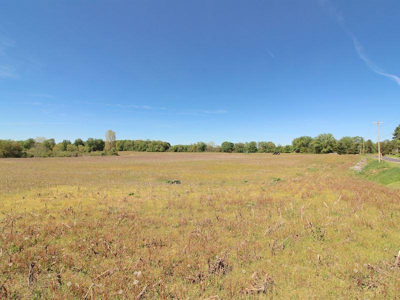 Burbank St - 113 Acres : Creston : Medina County : Ohio