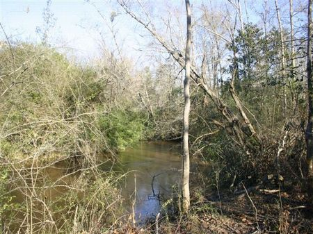 112 Acres : Mt. Olive : Covington County : Mississippi