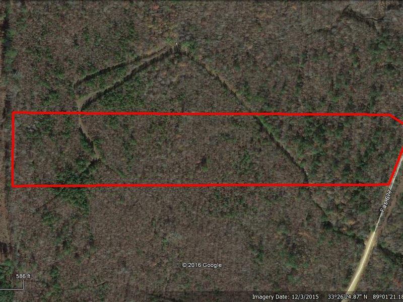 Land For Sale In Sturgis, Ms : Sturgis : Oktibbeha County : Mississippi