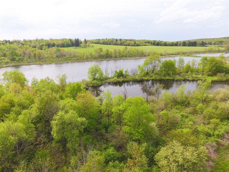 62 Acres Farmland Whitney Point Ny : Triangle : Broome County : New York