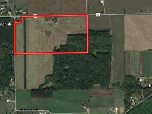Buildable Acreage In Dalton : Dalton : Marquette County : Wisconsin