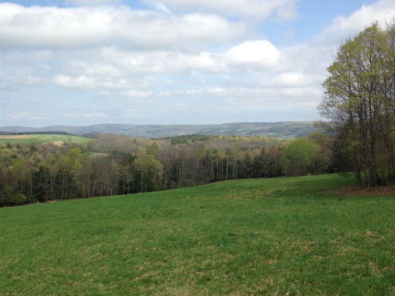 93 Acre Hunting Camp : Edmeston : Otsego County : New York