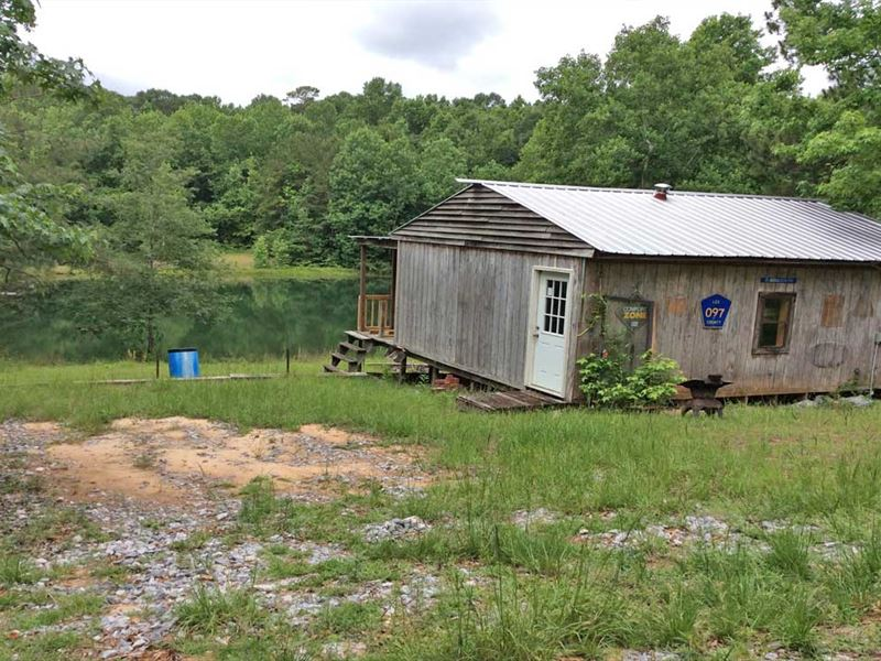 Bullock Community Cabin Pond & 30Ac : Brantley : Crenshaw County : Alabama