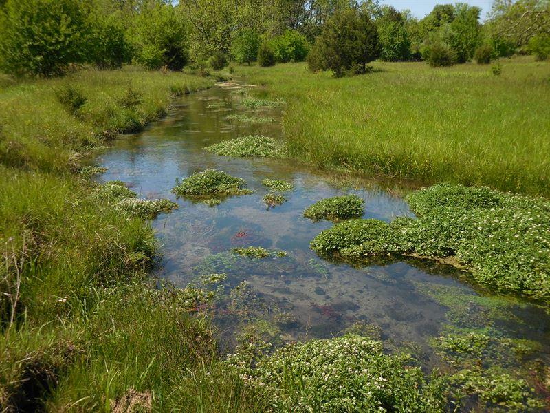 26+ Acres With Stream : Stephens City : Frederick County : Virginia