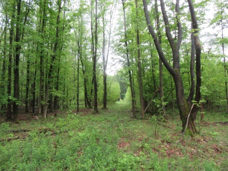 142 Acres Syracuse Ny Lake Ontario : Palermo : Oswego County : New York