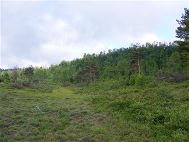 Adirondack Mountain Views : Parishville : Saint Lawrence County : New York