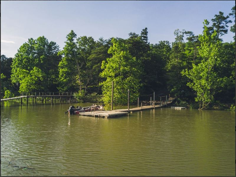 Lots Of Wildlife And Great Fishing : Huddleston : Bedford County : Virginia