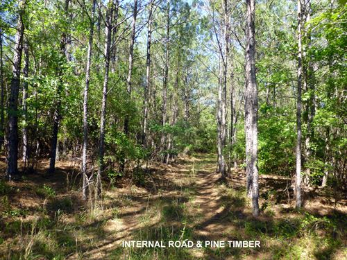 10-021 Monterey Tract : Forest Home : Butler County : Alabama