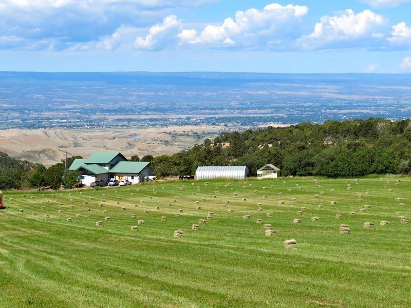 Montrose Ranch : Montrose : Montrose County : Colorado
