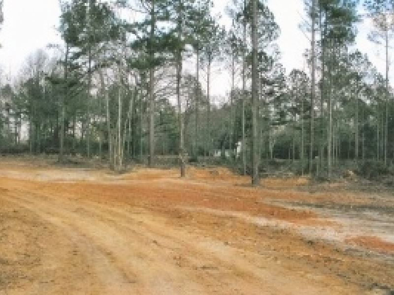 52 Acres In Scott : Forest : Scott County : Mississippi