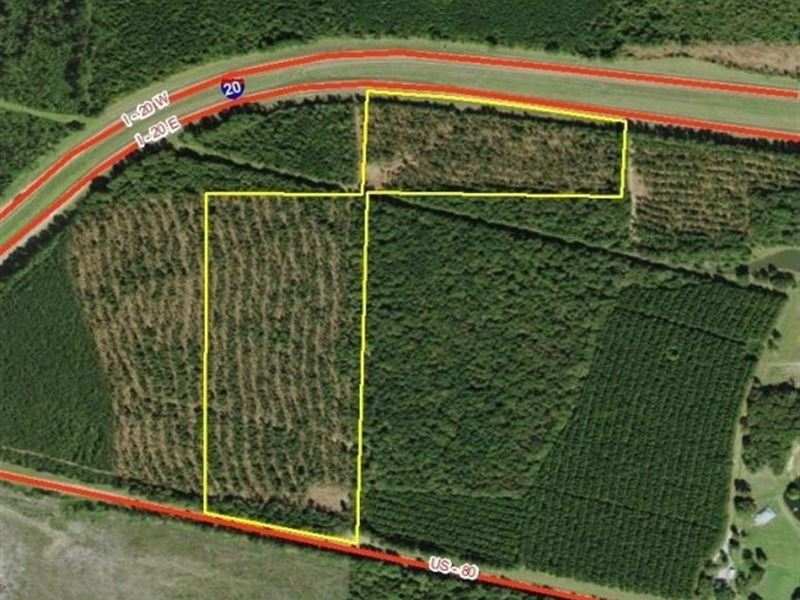 50 Acres In Newton County : Lake : Newton County : Mississippi