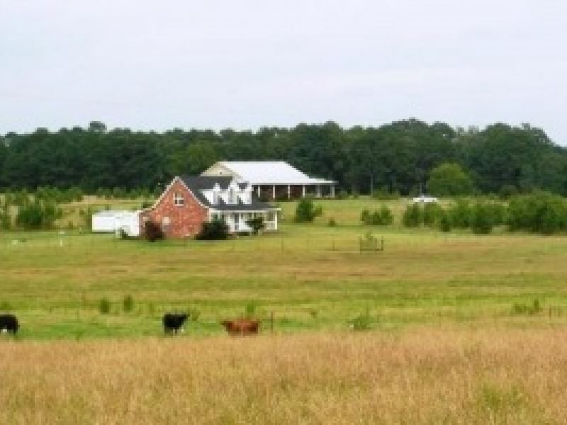 50 Acres In Clarke County : Quitman : Clarke County : Mississippi