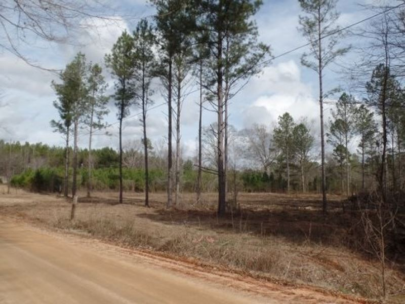 51 Acres In Lauderdale County : Chunky : Lauderdale County : Mississippi