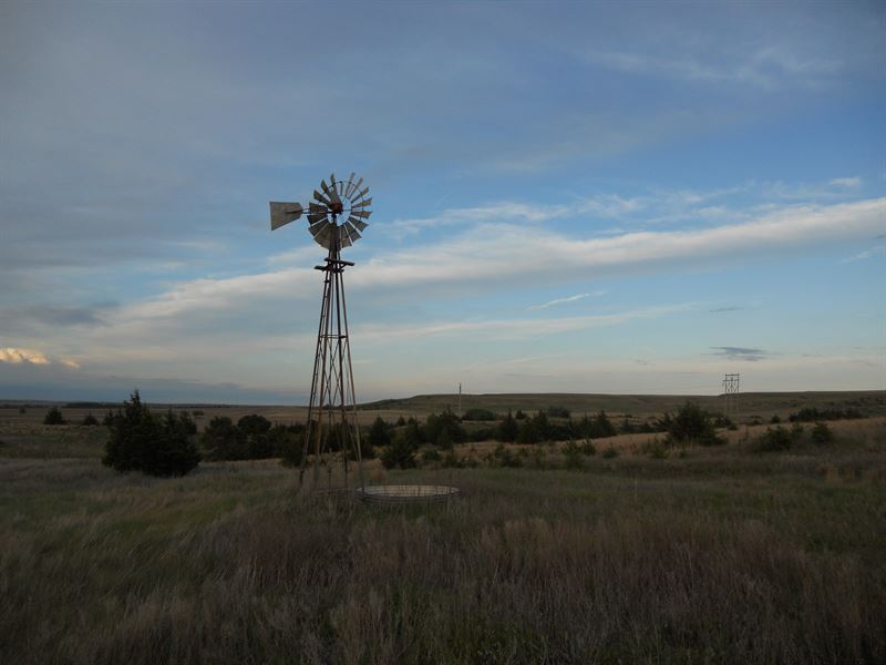 Russell County Grass And Hunting : Russell : Russell County : Kansas