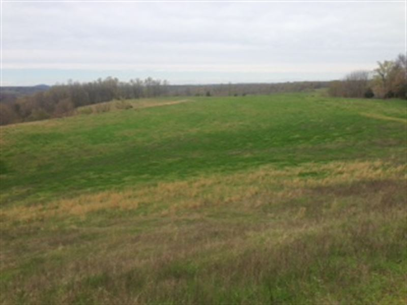 Beautiful Farm With Multiple Water : Marshall : Searcy County : Arkansas