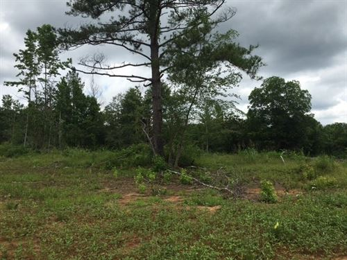 20+/- Acres : Canton : Madison County : Mississippi