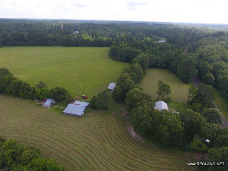 48 Ac - Pasture & Homes Near To : Jasper : Jasper County : Texas