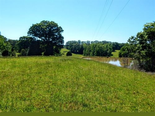 279 Acres, Pond, Barn, Fencing : Bruceton : Carroll County : Tennessee
