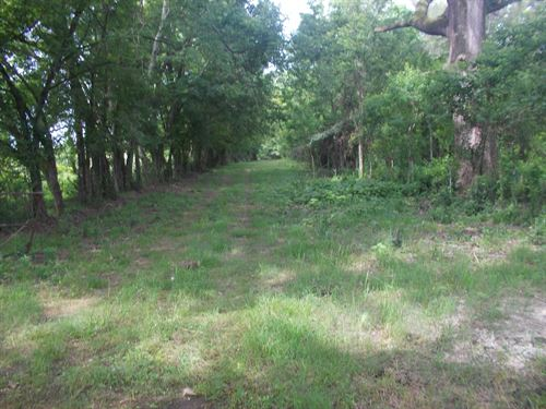 Great Residential And/Or Hunting : Millbrook : Elmore County : Alabama