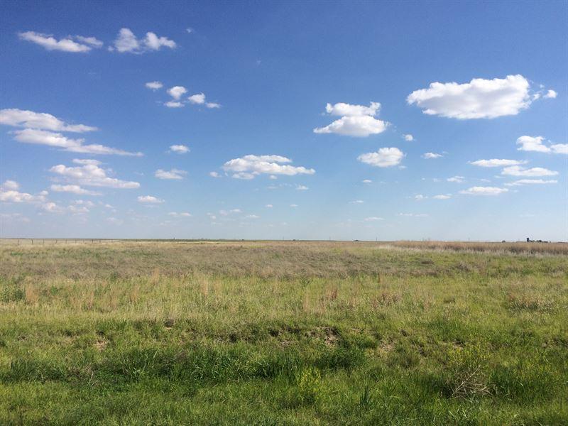 Greeley County Quarters : Tribune : Greeley County : Kansas