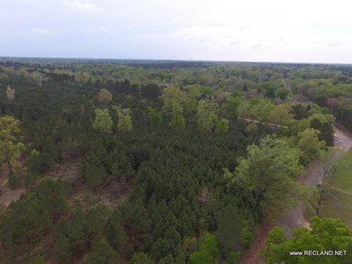 80 Ac - Timberland For Rural Home : El Dorado : Union County : Arkansas