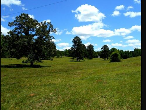 192.93 Acres In Union County : Blue Springs : Union County : Mississippi