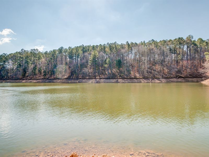 89.59 Acres On Tims Ford Lake : Winchester : Franklin County : Tennessee