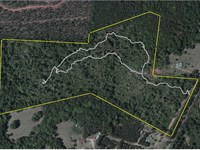Great Personal Hunting Property : Thomaston : Upson County : Georgia