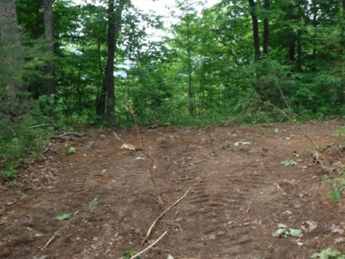 55.79 Acres Wooded In Overton Co : Monterey : Overton County : Tennessee