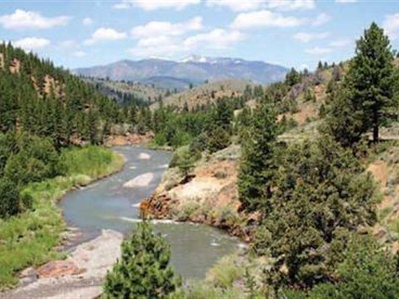 40 Ac. California Miningclaim River : Markleeville : Alpine County : California