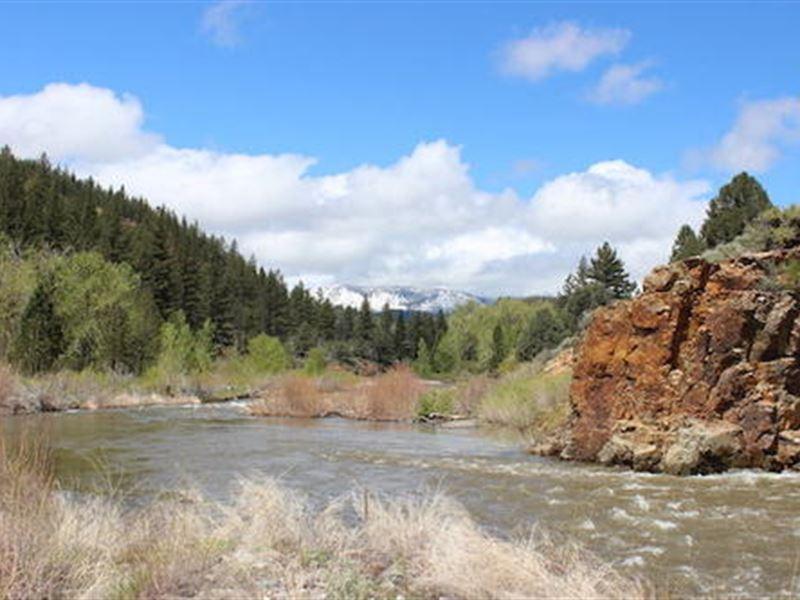 17.5 Ac. Cali Mining Claim W/River : Markleeville : Alpine County : California