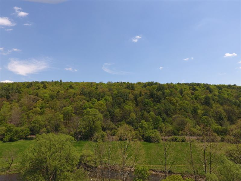 76 Acres Timberland : Newark Valley : Tioga County : New York