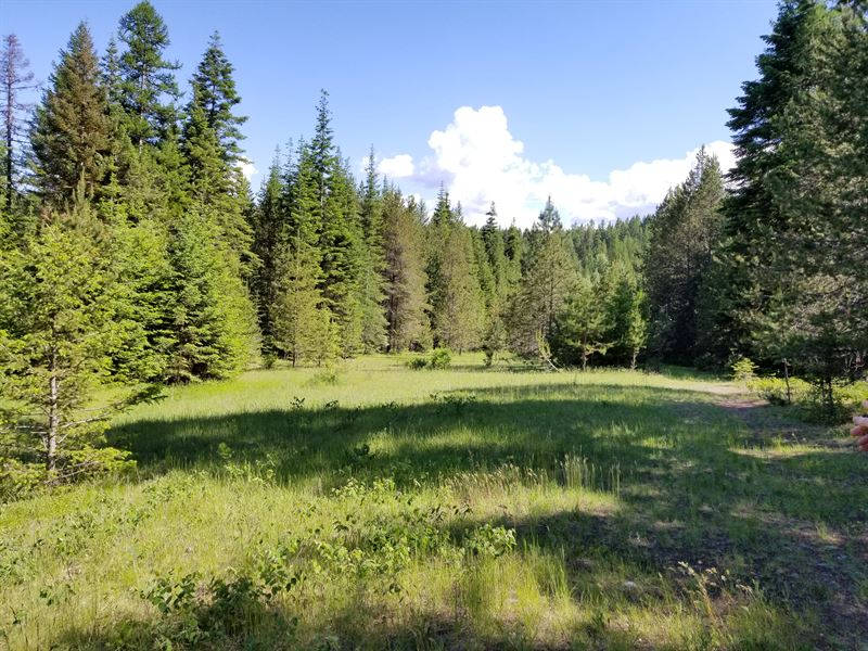 Moyie Springs Acreage : Moyie Springs : Boundary County : Idaho