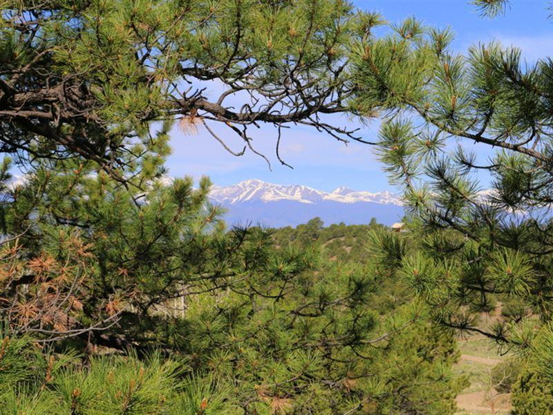 King's Domain : Westcliffe : Custer County : Colorado