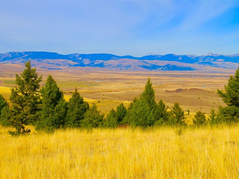 Elk View : Butte : Silver Bow County : Montana