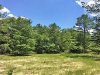 Good Hope Road Tract : Dozier : Covington County : Alabama